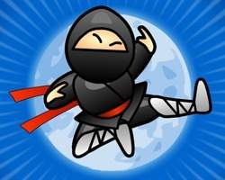 Misiuni Ninja